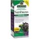 Black Elderberry-Extrato Sabugueiro S/Álcool