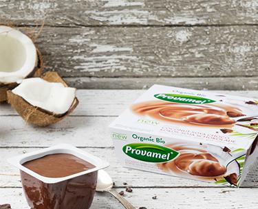 Sobremesa de Soja Bio Coco-Chocolate